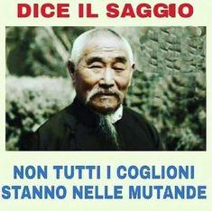 Verona, Lucci, Anti Social, Funny Faces, Behavior, Lol, Memes, Internet, Marketing