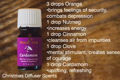 Young Living Essential Oils: Diffuser Blends Recipes Christmas Holidays Winter www.youngliving.org/ambermoore