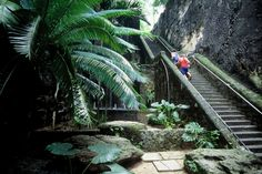 Queen's Staircase: Nassau Attractions Review - 10Best Experts and Tourist Reviews