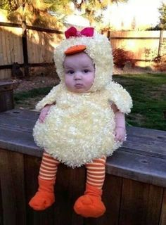 Cutest little chicken I've ever seen!
