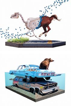 Surreal Animal Paintings by Josh Keyes | Inspiration Grid | Design Inspiration