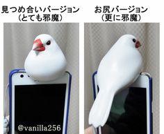 sukekyo: 実物大の文鳥イヤホンジャックカバーを作ってみた。…が、邪魔すぎる。 #buncho… on Twitpic