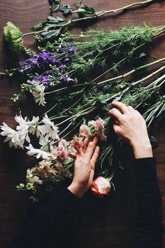 Choosing flowers flowers. flora. bloom. wildflowers. vase. bouquet. xx