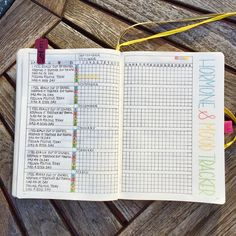 Great Year in Pixels pages! Including this layout to track moods and hormones. A great idea to use your bullet journal to help with health and self care.