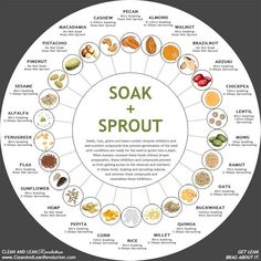 Soak & Sprout Guide micro greens wheat grass growing growing seedlings how to grow vegetables broccoli sprouts alfalfa sprouts sprouts bean sprouts Growing Seedlings, Growing Sprouts, Growing Microgreens, Growing Vegetables, Regrow Vegetables, Growing Plants, Potatoes Growing, Garden Seeds, Vegetable Garden