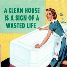 I'm not saying live in filth but I'm not missing out on fun things to do just to clean my house! Ever!