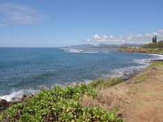 Today, let's go North of Kapa'a just before Anahola. Stunning day along this 5-mile long walking/bike path.  Photo Finish - Hawaii, mystery, and trouble in paradise that never looked so good - http://terryambrose.com/photo-finish/