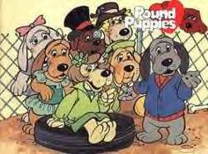 we're the pound puppies, we wanna go home with you!