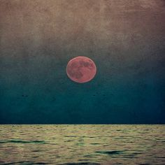 Image shared by Vanessa °. Find images and videos about sky, sea and moon on We Heart It - the app to get lost in what you love. Pink Moon, Red Moon, Nocturne, Waterloo Sunset, Ligne D Horizon, A Well Traveled Woman, Shoot The Moon, Good Night Moon, Sun And Stars