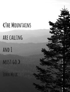 The Mountains are calling and I must go Fine by jillianschipper