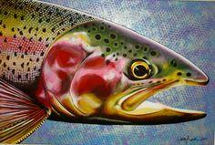 Artist Spotlight: Fresh Fine Art by Sarah Lauridsen Watercolor Fish, Watercolor Images, Fish Artwork, Stills For Sale, Fish Drawings, Rainbow Trout, Fish Print, Creative Art, Amazing Art