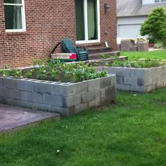Cinder block raised garden bed. Eco friendly, cheap & quick. Plant herbs, strawberry plants IN blocks.
