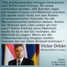 Die Asylsuchenden bringen Verbrechen und Terror nach Europa. Es muss verhindert werden, daß Banden Jagd auf unsere Frauen und Mädchen machen. Ich werde mich nicht von den Rotten unverbesserlicher Kämpfer für die Menschenrechte belehren lassen. Sollen wir Sklaven sein oder sollen wir frei sein? Keine Freiheit ohne Wahrheit, heute ist es in der EU verboten, die Wahrheit zu sagen. Wenn wir die Völkerwanderung stoppen wollen, müssen wir vor allem Brüssel bremsen. — Victor Orbán