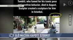Meanwhile in Hungarian news - 9GAG