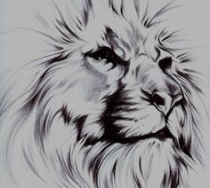 DeviantArt: More Like Lion, skull, rose, pearls, moon tattoo design WIP by Cleicha