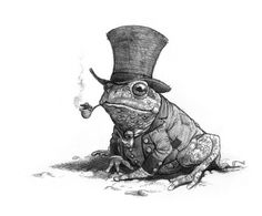 research for toad from toad hall #windinthewillows