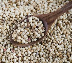 Millet: Millet is one of many whole grains that are part of a healthy, migraine-free life. It contains a ton of magnesium and B vitamins, which help kick migraines to the curb.   Combine this healthy grain with a few additional ingredients for a refreshing millet and lentil tomato salad.