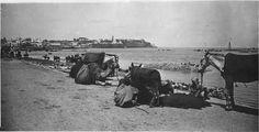 Rabat  Embouchure de l'oued Bouregreg    1916.05.11