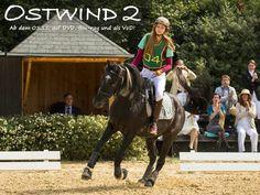 Riding Stables, Horse Riding, Horse Dance, Black Stallion, Two Horses, Horse Photos, Hanna Binke, My Idol, Equestrian
