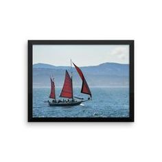 Framed photo paper poster: Victoria Whale-Watching