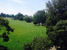 #Koeln Rheinpark. Soooo grün!