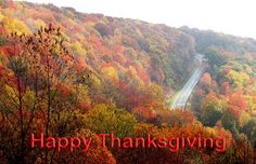 Happy Thanksgiving  Card  Come to Dinner Trees von PlantTreesUS