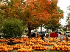 View Our Fall in New England Pinterest Photo Board |