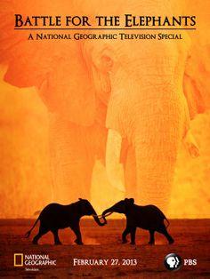 Battle For The Elephants Poster Social