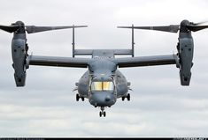 Military Appreciation : Photo