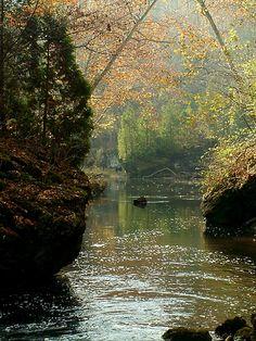 John Bryan State Park - Ohio. 9.7 miles of mountain bike trails. Link to website: http://ohiodnr.com/parks/jhnbryan/tabid/750/Default.aspx