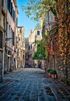 Street On Venice   (10 Beautiful Photos)
