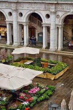 Marina Magro: Piazza dei Signori in fiore, tra folate di vento e pioggia ...