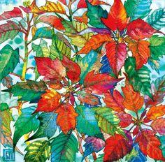 Poinsettia. Art by Sofía Perina Miller