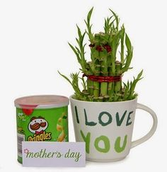 Indian Festival Gift Ideas: 5 Most Sought After Mother's Day Gifts for Your Wo...