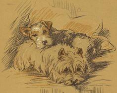 Vintage illustration of dogs