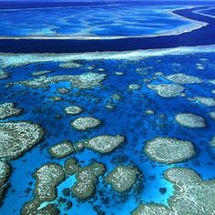 Explore the Great Barrier Reef - Queensland, AUSTRALIA  The Great Barrier Reef is one of the seven wonders of the natural world, and viewing it from a greater distance, you can understand why. It is the only living thing on earth visible from space. The w