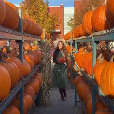 "ROOM 502 on Instagram: ""Repost 🖤 • @claudiagonzaleztv In Pumpkin heaven! 🥧 Foraging only Veggies ,No Turkey here , No Black Friday waste , No cyber Monday Fast…"" Instagram Repost, Cyber Monday, Black Friday, Turkey, Heaven, Pumpkin, Vegetables, Videos, Room"