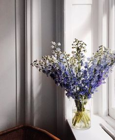 Delphiniums are fast becoming our new favorite flower...gorge windowsill by @amy_stone ❤#delphiniums // https://www.instagram.com/alyssakapitointeriors/