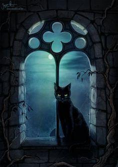 Black cat via churchofhalloween