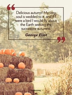 The George Eliot one. So excited for my favorite season to be in full swing
