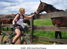 Cicloturismo en Valonia, la región sur de Bélgica