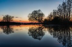 Awsome looking reflections of the trees on the flooded banks of river Ilmatsalu, Estonia after the sun had set.