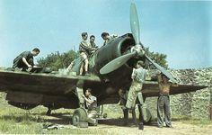 """Service Italian fighter Reggiani Re.2000 «Falco"""""""