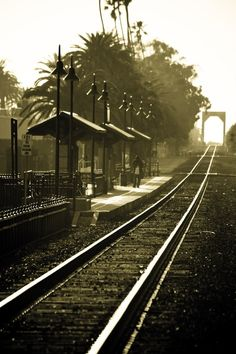 Ventura, California Amtrak train station by the fairgrounds. Shooting into the sun in the late afternoon. by esperanza