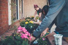 Simple Ways to Spruce Up Your Garden Garden Weeding Tools, Garden Fencing, Garden Art, Home And Garden, Taj Mahal, Olive Garden, Garden Pictures, Unique Flowers, Desert Rose