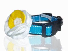 Turquoise Blue Daisy Doo Saddle Stitch Dog Collar With Flower From Blue Daisy, Pet Names, Pet Accessories, Spring 2014, Grosgrain Ribbon, Den, Your Pet, Classic Style, Collars