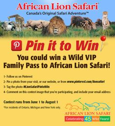 Enter to Win a VIP Family Pass Hoping to win this for my family! Summer Travel, Summer Fun, Keep Dreaming, Safari Adventure, Dream Vacations, Crafts To Make, Activities For Kids, Lion, Places To Visit