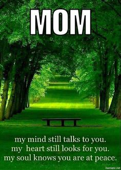 I miss you Mom...today & everyday <3 Happy Mother's Day.