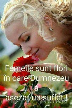 8 Martie, Beautiful Roses, Cute, Fruit, The Secret, Bible, Peace, Life, Female