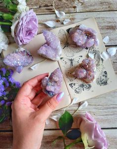 Spirit aura cactus quartz helps to assist in spiritual growth and provide harmony and balance Crystal Healing Stones, Crystal Magic, Crystal Shop, Crystal Grid, Crystal Cluster, Wicca Crystals, Crystals And Gemstones, Stones And Crystals, Crystal Aesthetic